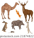 Animals of forest, desert and steppe zones. 21874822