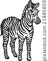 สัตว์ป่าม้าลายไม่มีพื้นหลัง 21885650