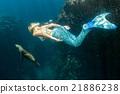 Sea lion and Mermaid underwater 21886238