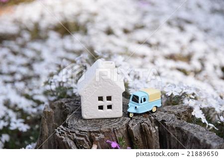 sweet home 21889650