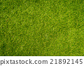 grass texture patterned background 21892145