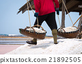 Worker carrying raw salt in salt farm 21892505