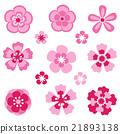 Cherry blossom. Sakura flowers. 21893138