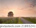rural summer sunrise 21893241