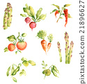 蔬菜 插圖 插畫 21896627