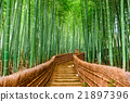 Kyoto, Japan Bamboo Forest 21897396