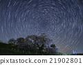 瀑布的櫻桃樹 星空 櫻花 21902801