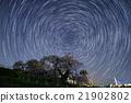 瀑布的櫻桃樹 星空 櫻花 21902802