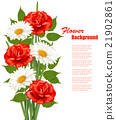 Flower Background With White Daisy and Red Roses 21902861