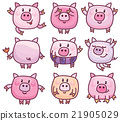 pig, funny, cute 21905029