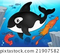 Ocean fauna topic image 9 21907582