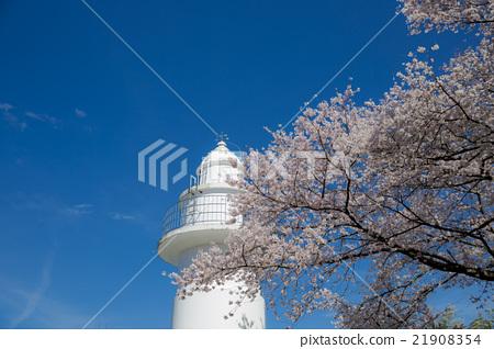 Iwasaki None Lighthouse 21908354