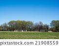 baseball, sports, sport 21908559