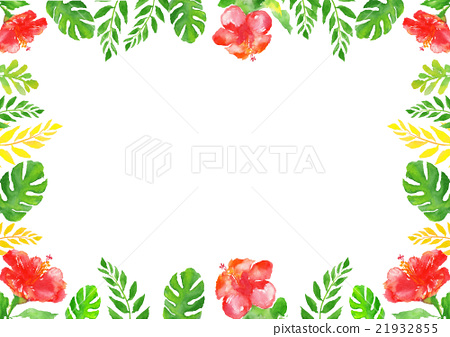Illustration Hibiscus Tropical Frame 21932855