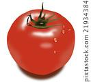 tomato, tomato juice, vegetables 21934384