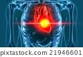human heart pain 3d rendering 21946601