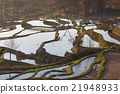 Details season of rice terrace in Yunnan,China 21948933