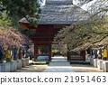 茂林寺 寺院 門 21951463