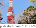 Sakura and Tokyo Tower Observation Deck 21967129