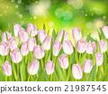 復活節 春天 春 21987545