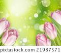 美麗 漂亮 背景虛化 21987571