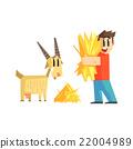 boy, feeding, goat 22004989