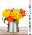 Colorful tulips bouquet in watering can 22008605