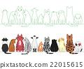 猫 各种各样 姿势 22015615