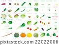 蔬菜 食品 原料 22022006