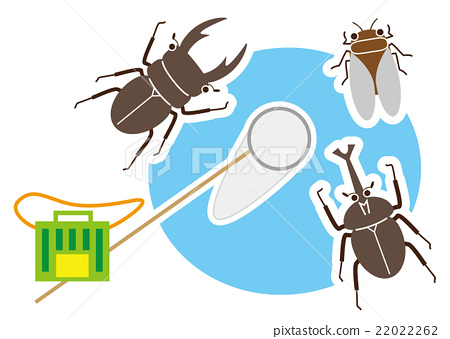 昆蟲採集 矢量 暑假 22022262