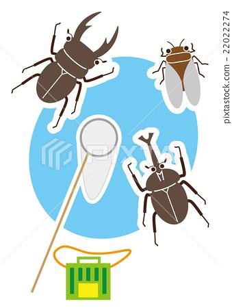 收集昆蟲 22022274