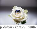 titanium wedding rings  22028887