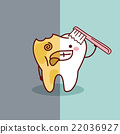 cartoon healthy and decayed tooth 22036927