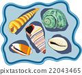 sea-shells 22043465