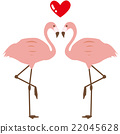 flamingo, flamingoes, flamingos 22045628
