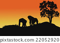 silhouette of gorilla in fields 22052920