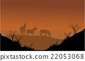 Zebra silhouette in hills 22053068
