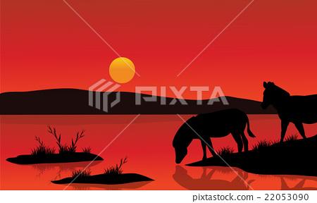 Silhouette of zebra in riverbank 22053090