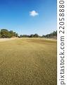 golf, course, lawn 22058880
