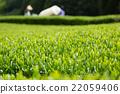 หญ้าอ่อน,หมวดธุรกิจ,อุตสาหกรรม 22059406