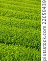 หญ้าอ่อน,หมวดธุรกิจ,อุตสาหกรรม 22059439