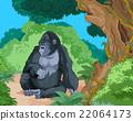 Sitting Gorilla 22064173
