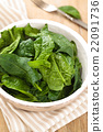 Fresh spinach leaves. 22091736