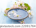 น้ำ,ดอกไม้บาน,ดอกไม้ 22091764