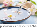 น้ำ,ดอกไม้บาน,ดอกไม้ 22091766