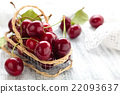 Ripe cherries. 22093637