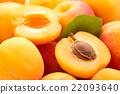 Fresh apricots. 22093640