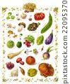 法國南部的蔬菜 22095370