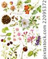 法國南部 水彩畫 植物 22095372