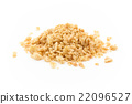 Textured vegetable protein: textured vegetable protein 22096527